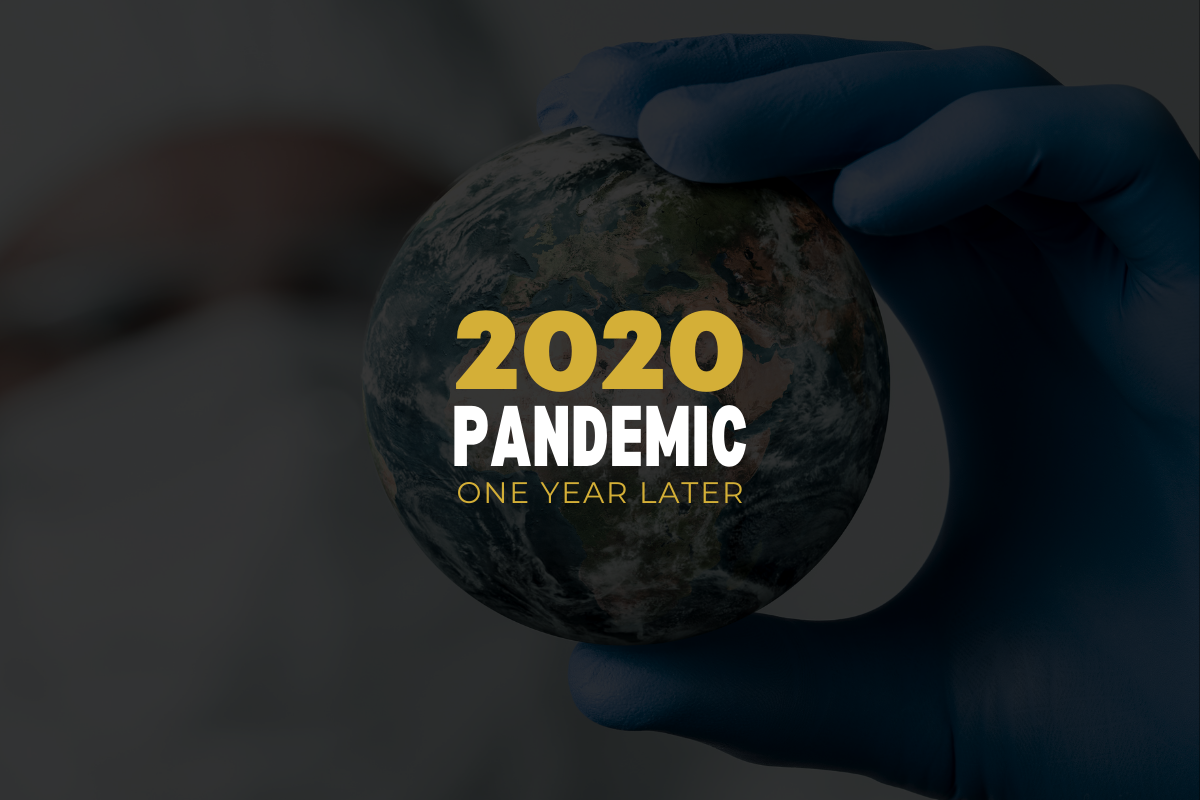 phipps reporting one year later pandemic